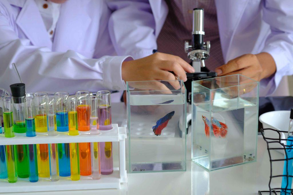 Aquarium Water test