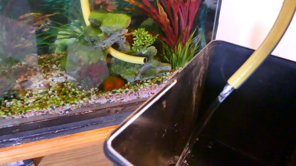 Aquarium changing Water