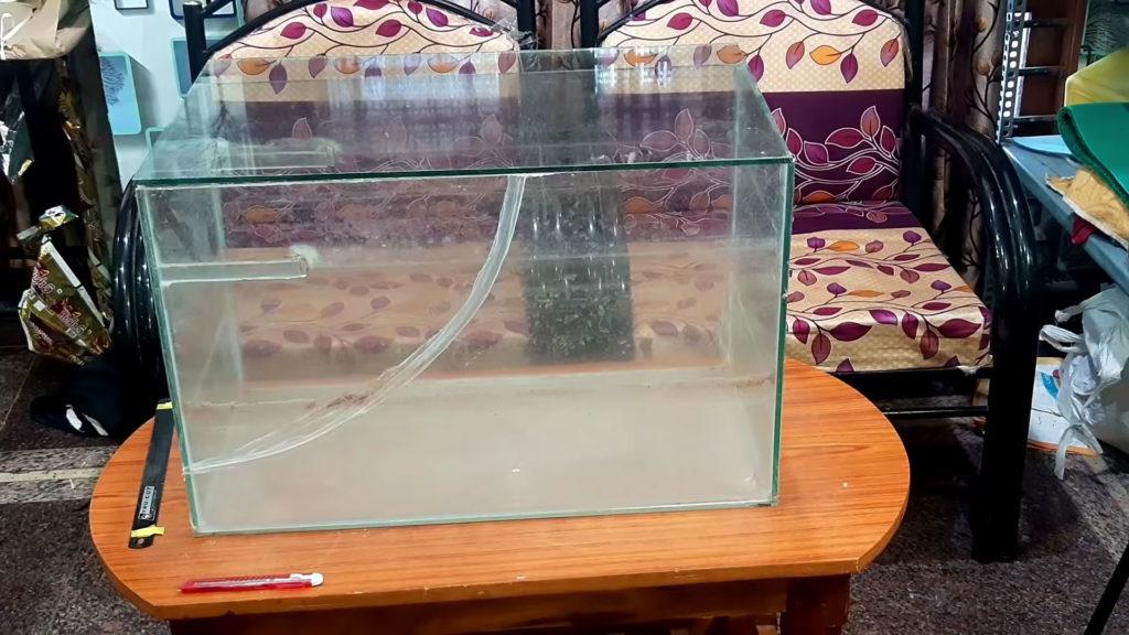 aquarium cracked